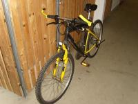 Mountainbike - Sprick
