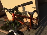 specialized p2 2009