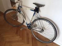 Singlespeed-Fixie - Vicini