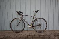 Rennrad - SPECIALIZED